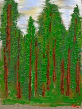 "Spruce - 8"" x 10"" digital print"